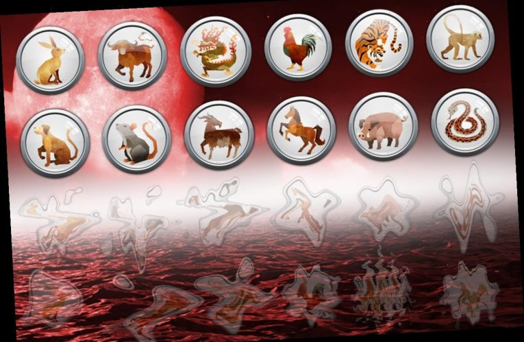 Daily Chinese Horoscope Tuesday February 23: What your zodiac sign has in store for you today
