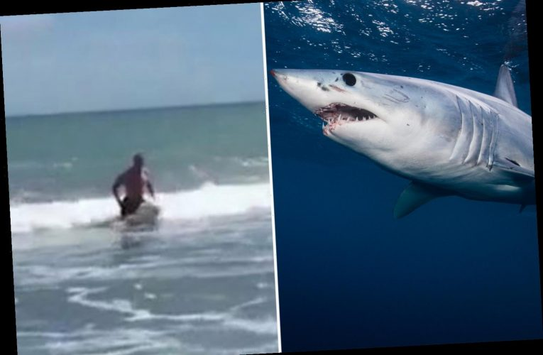 Terrifying moment swimmer runs for his life as TWO SHARKS chomp at his heels off New Zealand beach