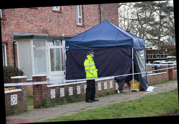 Elderly man is arrested with serious injuries after woman in her 70s was found dead in East Sussex