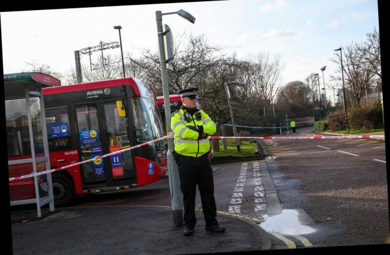Man found stabbed to death inside car to become London's fifth knife murder victim in just 12 days