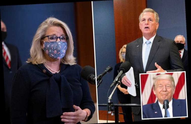 GOP leader Kevin McCarthy awkwardly clashes with Liz Cheney as she argues Trump SHOULDN'T have a role 'in future of US'
