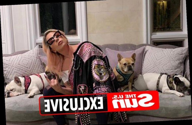 Woman 'screamed' as Lady Gaga's dog walker Ryan Fischer was shot four times & pups stolen, frantic 911 caller claimed