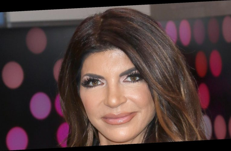 Teresa Giudice's Net Worth: The Real Housewives Star Makes Less Than You Think