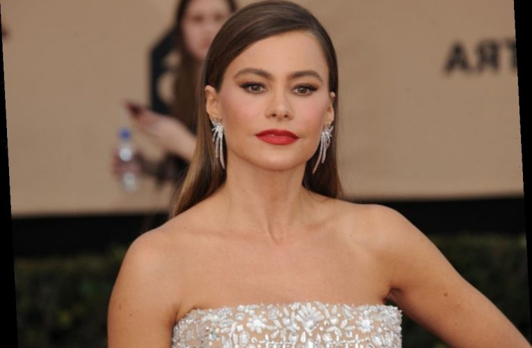 Sofia Vergara Wins Another Embryo Fight, But Her Ex Won't Admit Defeat