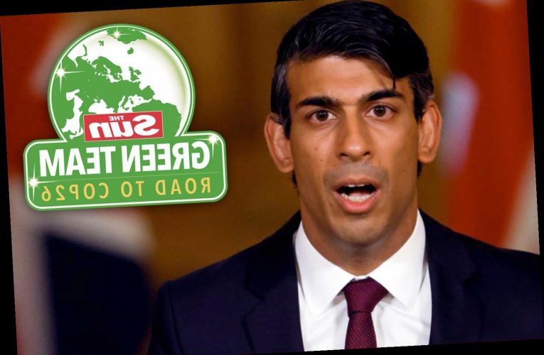 Rishi Sunak should use new Brexit freedoms to cut taxes and go green, say experts