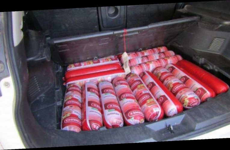 Border Patrol agents confiscate nearly 200 pounds of bologna found in car at New Mexico border