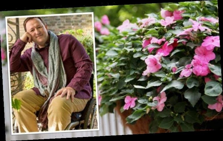 Gardeners' World host Mark Lane shares how to plant the perfect hanging basket in 10 steps