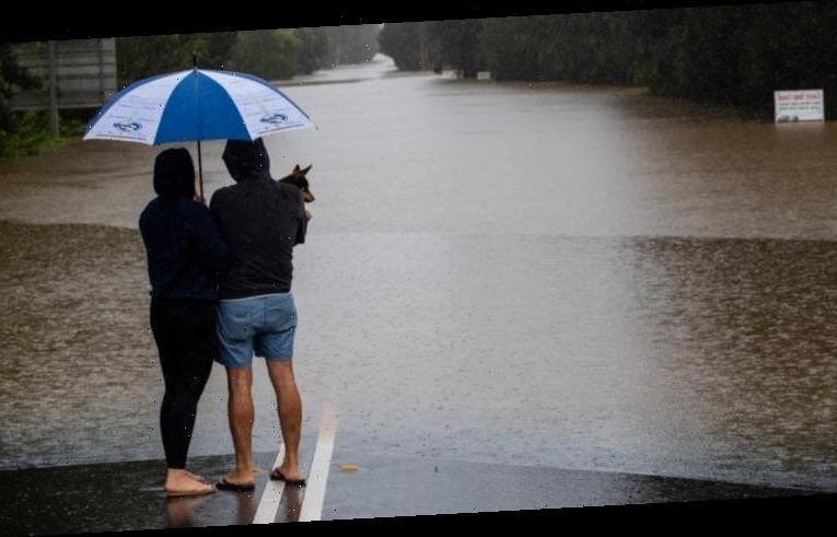 NSW floods LIVE updates: South Coast told to prepare for heavy rainfall as extreme weather event continues across state