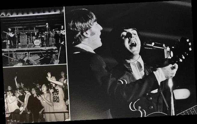 Photos of Beatles St Louis concert in 1966 go on sale for £3,500