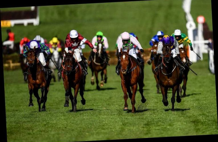 Bet £10 get £20 welcome bonus PLUS extra £10 free bet on Cheltenham Gold Cup with 888Sport Festival special