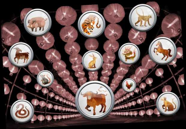 Daily Chinese Horoscope Thursday March 11: What your zodiac sign has in store for you today