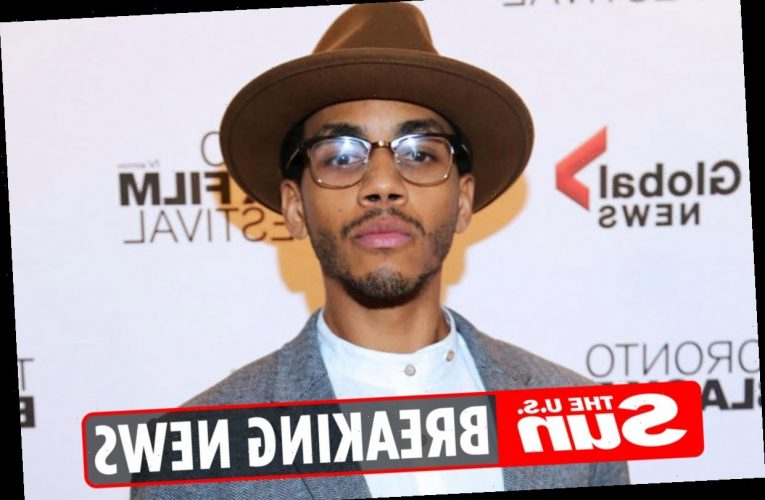Degrassi and Soundtrack actor Jahmil French 'dead at 29' as costars remember 'talented, compassionate' friend