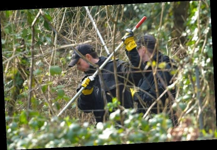 Woman, 37, charged with murder of newborn baby found dead in Hampshire woodland