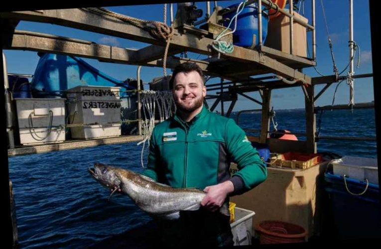 Morrisons buys trawler to secures future fish and seafood supplies