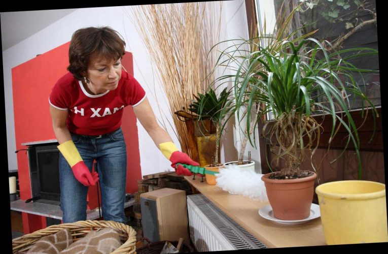 Spanish have increased house cleaning the most because of Covid – leaving Brits in their dust