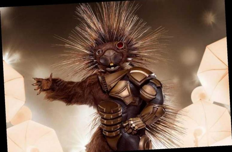 Porcupine The Masked Singer: Who is it?