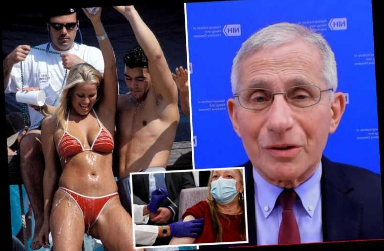 One in four adults in US have had 1st Covid jab as Fauci loosens up telling Spring Breakers to have fun but be cautious