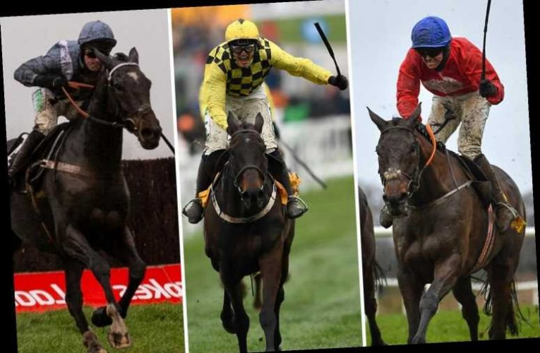 Cheltenham Festival 2021 Gold Cup ultimate guide: Best tips, odds, list of 41 runners for Friday's £625,000 showpiece