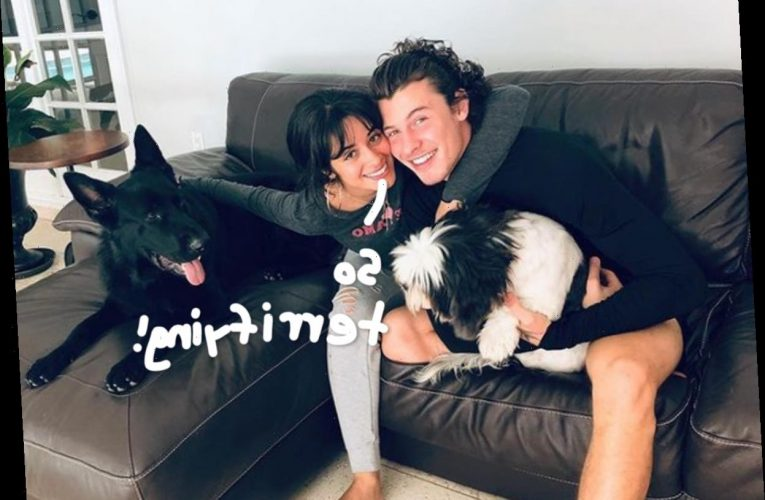 Shawn Mendes & Camila Cabello's Mansion Was Broken Into While They WERE There!