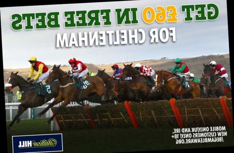 Horse racing betting offer – get £60 in FREE BETS for Cheltenham Festival with William Hill on day 2