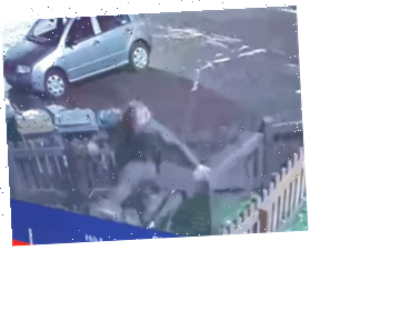 Sickening video shows thug DROP KICKING a cat into a garden in drunken rage