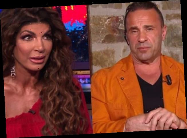 """Teresa Giudice Says Her Split was the """"Easiest Divorce in the Whole Entire World"""""""