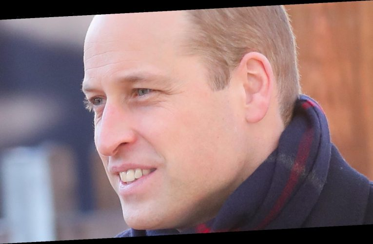 Prince William's Response To The Oprah Tell-All Has The Internet Furious