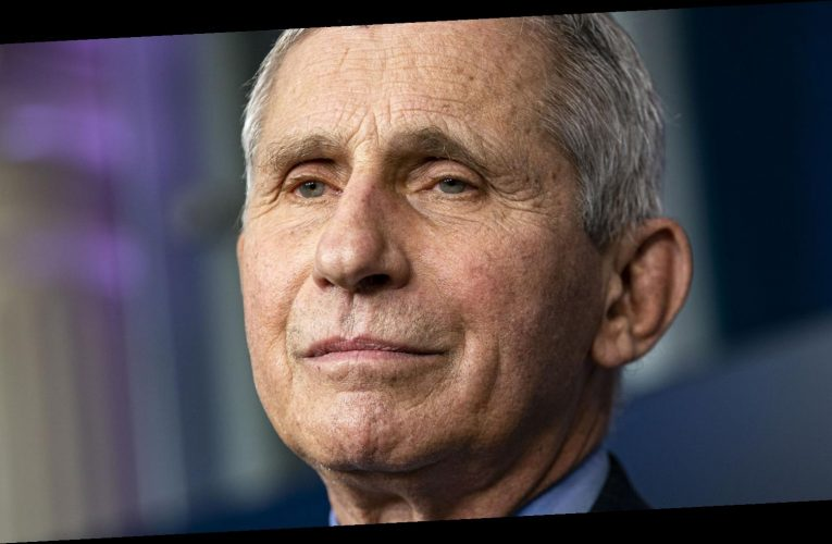 Dr. Fauci Names The Moment Donald Trump Shocked Him The Most