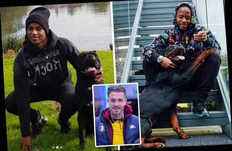 Kyle Walker joins Paul Pogba, Raheem Sterling, and Jack Grealish who have invested in £40k guard dogs for protection – The Sun
