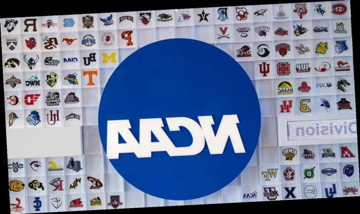 College athletic directors overwhelmingly reject professional model in survey