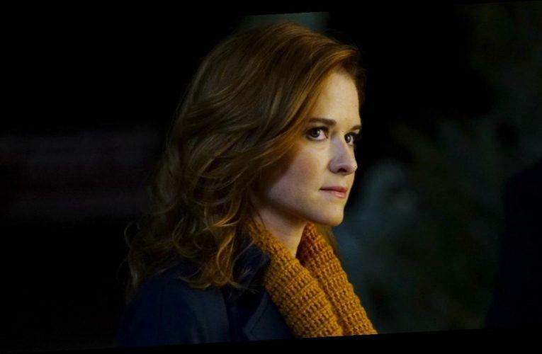 'Grey's Anatomy': Sarah Drew to Return for Season 17