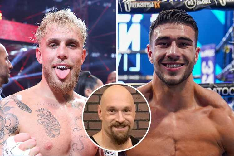 Jake Paul agrees to fight Tommy Fury – but on condition his brother Tyson faces heavyweight Michael Hunter on same card