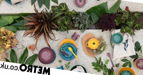 Le Creuset has a new range inspired by nature and it's very cute