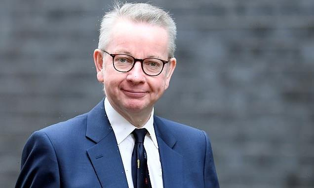 Michael's Gove allies accused of stoking storm over David Cameron
