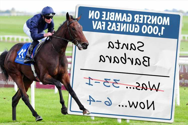 Monster gamble from 33-1 to 6-4 on 1,000 Guineas favourite Santa Barbara continues – despite horse having just ONE run
