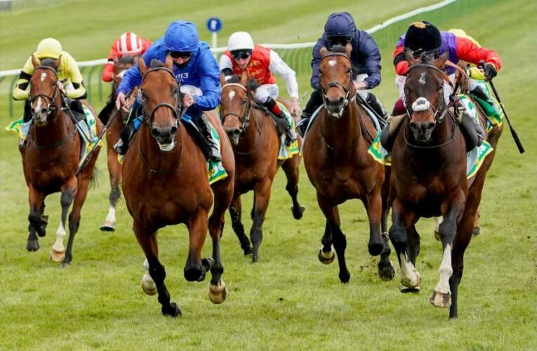 Poignant winner at Newmarket as the Queen's Tactical is on target just days after death of Prince Philip