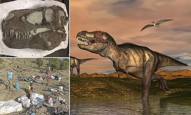 T. rex may have hunted in PACKS just like wolves, study reveals