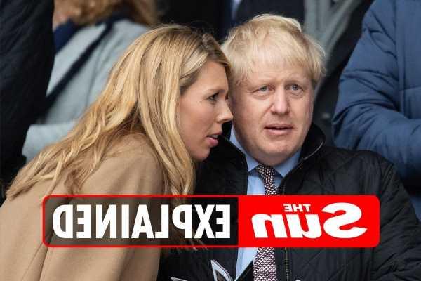 What is the Boris Johnson 'John Lewis nightmare'?