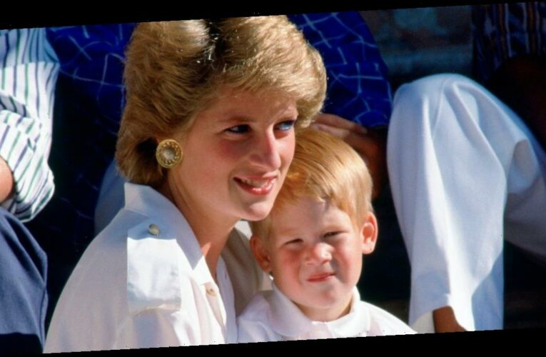 The royal family 'haven't learnt' says royal expert as he claims Harry and Meghan's words are exactly how Princess Diana felt