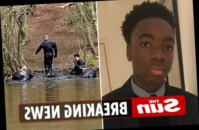 Richard Okorogheye: Police confirm body found in Epping Forest is missing teen, 19, after he vanished two weeks ago