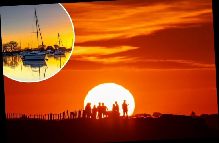 The sun provides a stunning backdrop for spectacular spring snaps