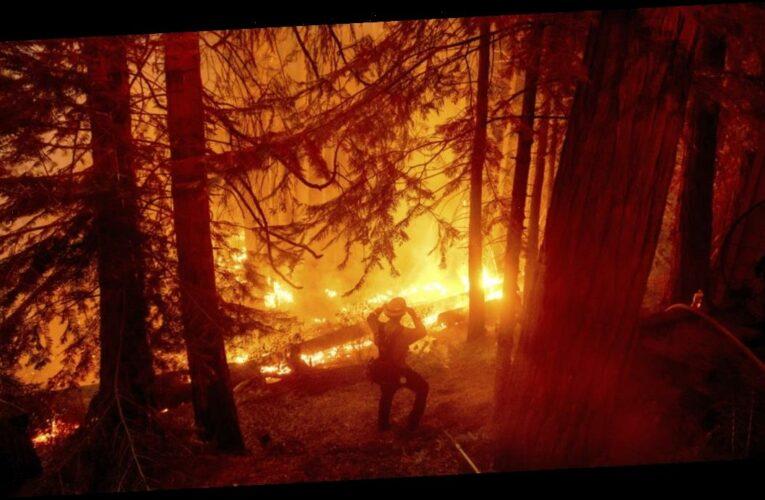 California to devote $536 million in fight against devastating wildfires