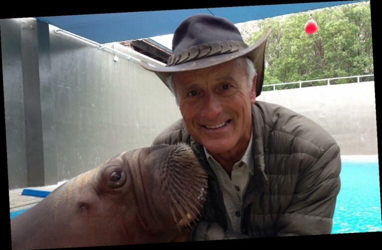 Beloved TV Wildlife Expert Jack Hanna Retires Due to Dementia