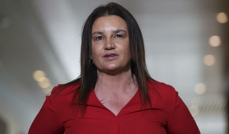 'I never said it. I'd never say that': Lambie denies homophobic remark after apology