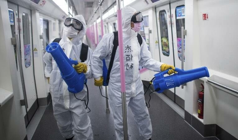 'There is no time to waste': WHO needs new powers to control future outbreaks, report says