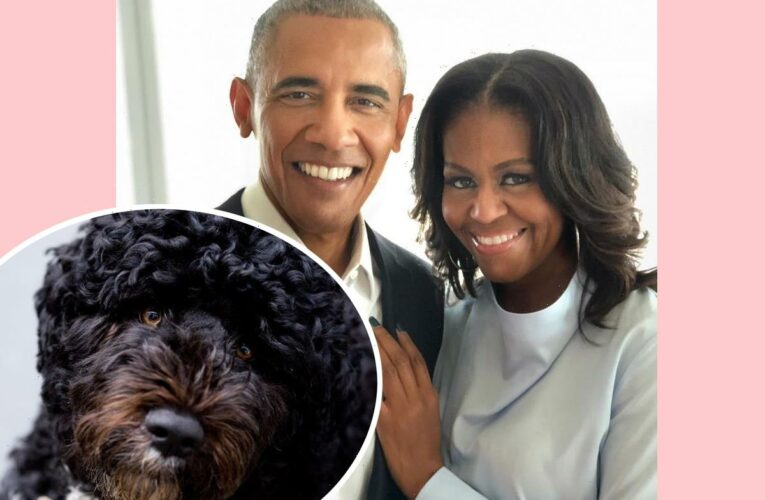 Barack & Michelle Obama Mourn The Death Of Their Beloved Dog & 'Loyal Companion' Bo
