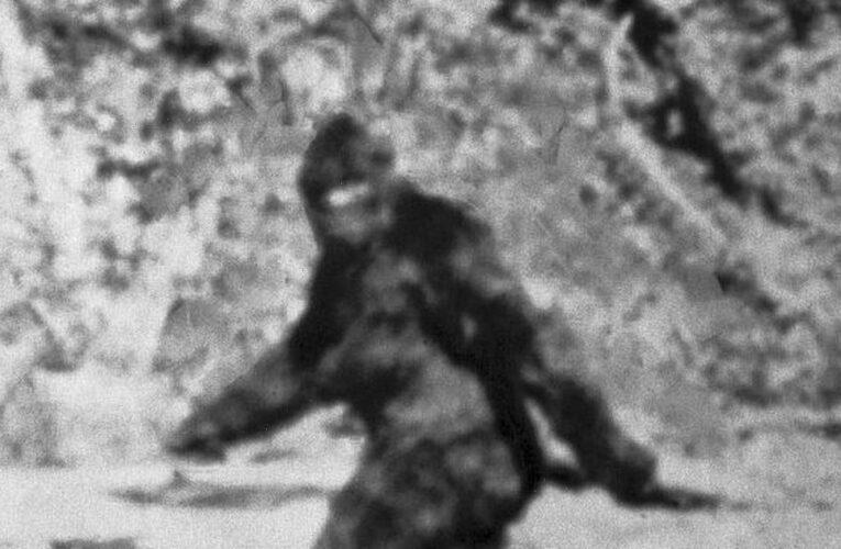 British Bigfoot clues as expert says 'ape-like humanoids' may be thriving in UK