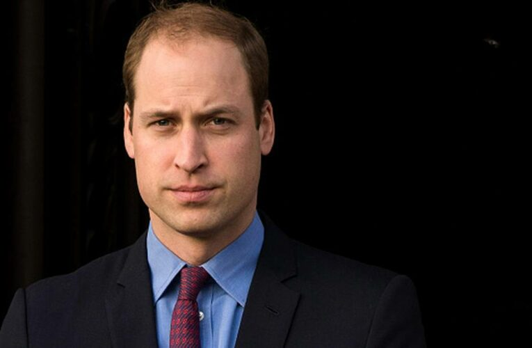 Daniela Elser: Prince William's use of 'I' and 'my' in Diana statement will break Harry's heart