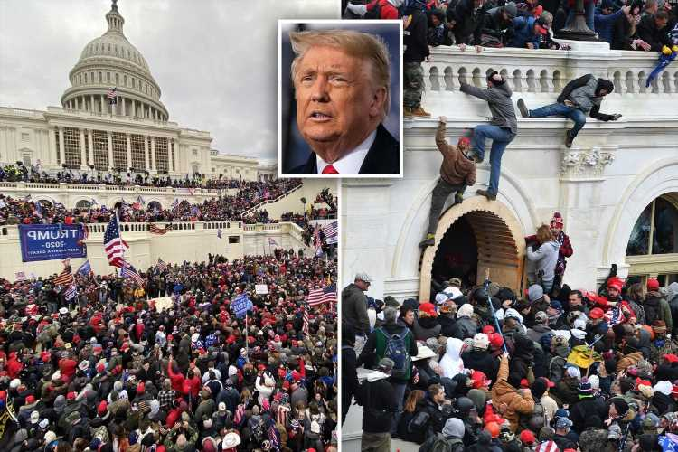 Donald Trump should TESTIFY on Capitol riot because he is 'obviously a very key individual,' Republican says