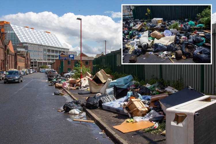 Fly tippers dump mounds of rubbish stretching 70ft outside new £900 million hospital as locals blast 'it's like a slum'